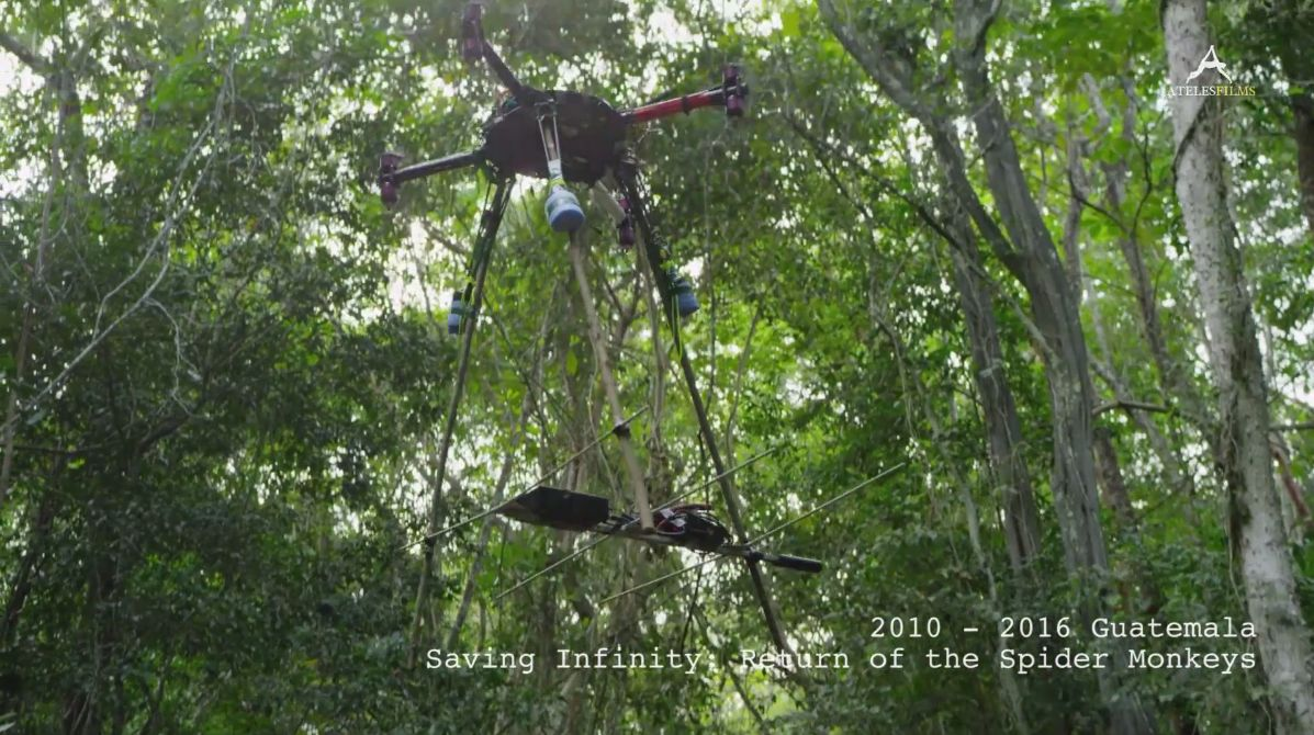 Another drone used by Michael Sanderson in The Return of The Spider Monkeys - © Ateles Films