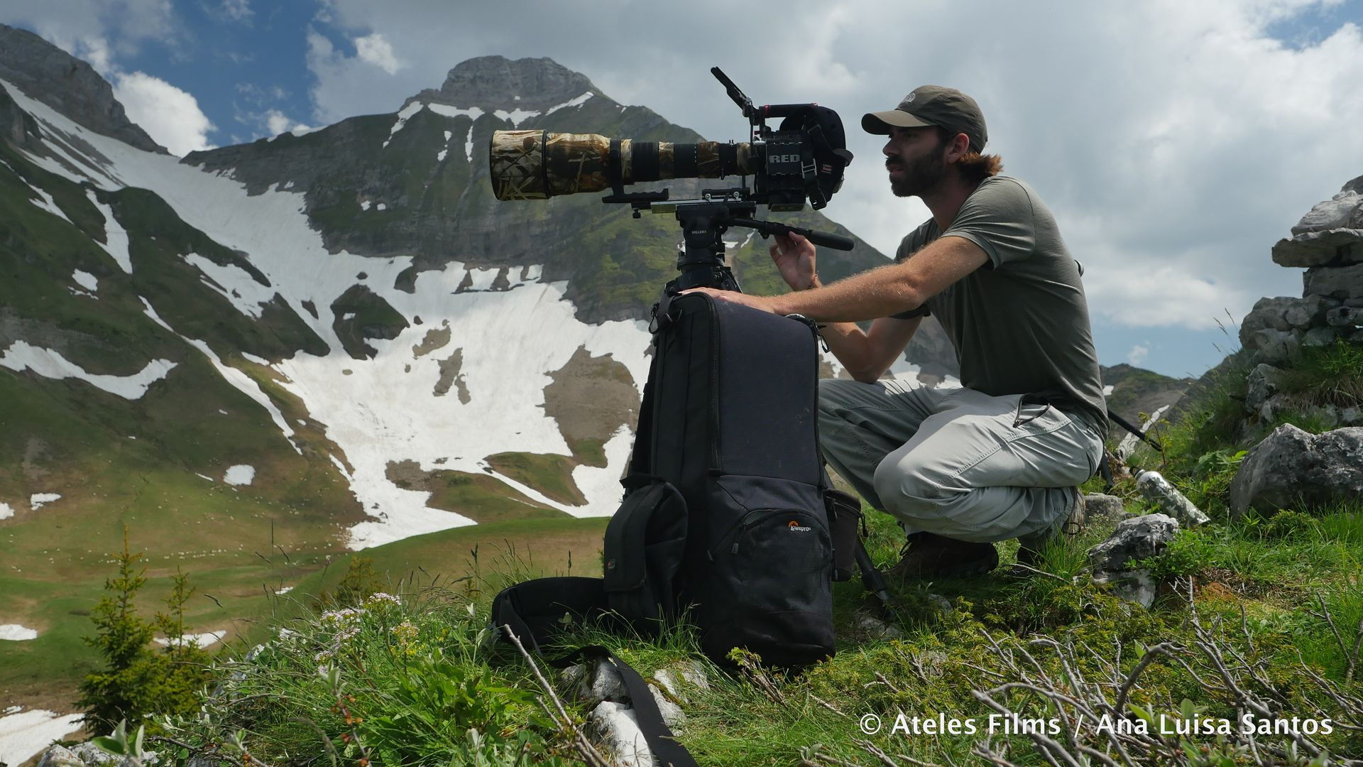 Michael Sanderson using RED cameras for filming wildlife