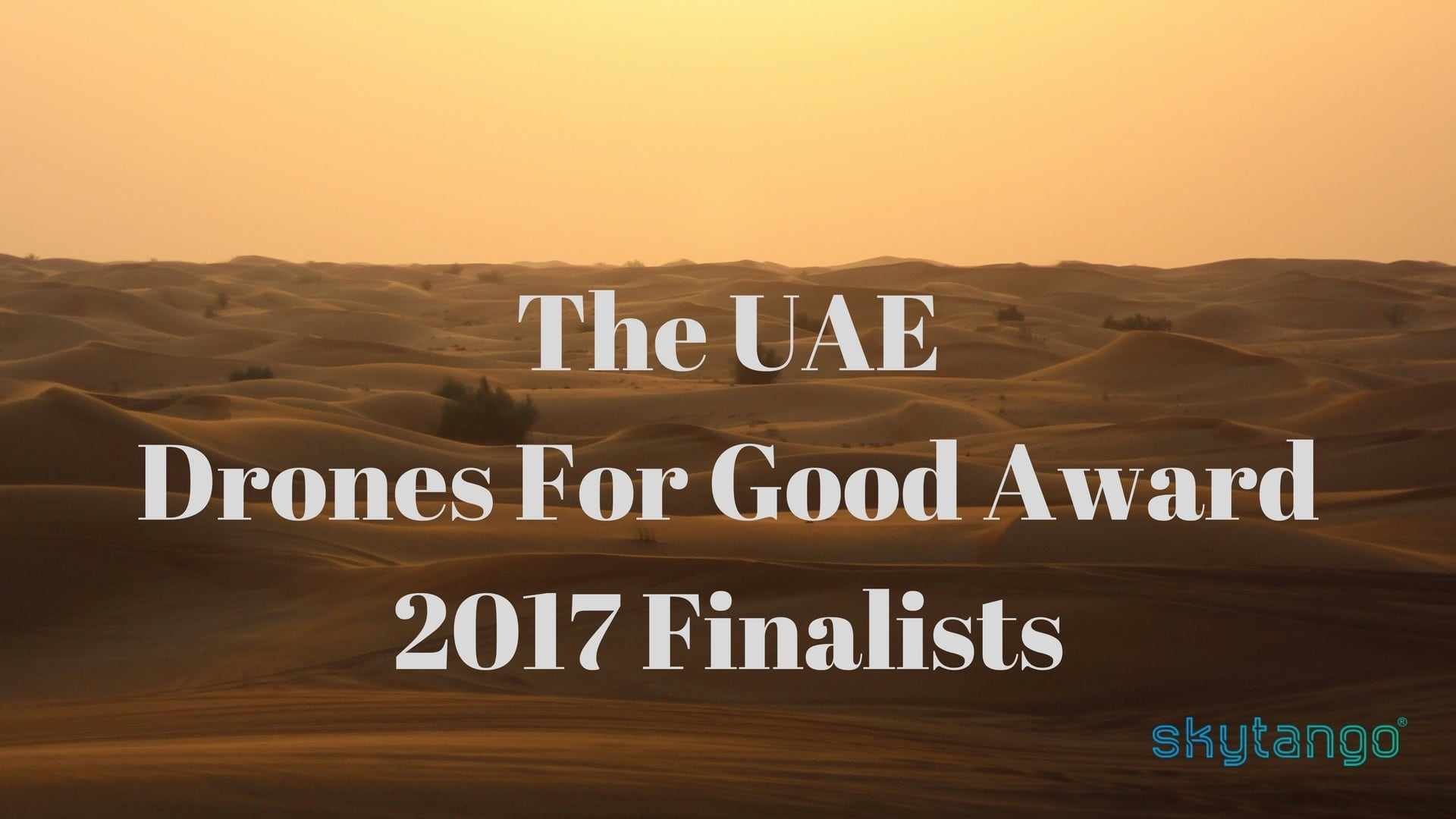 The UAE Drones For Good Award 2017 Finalists