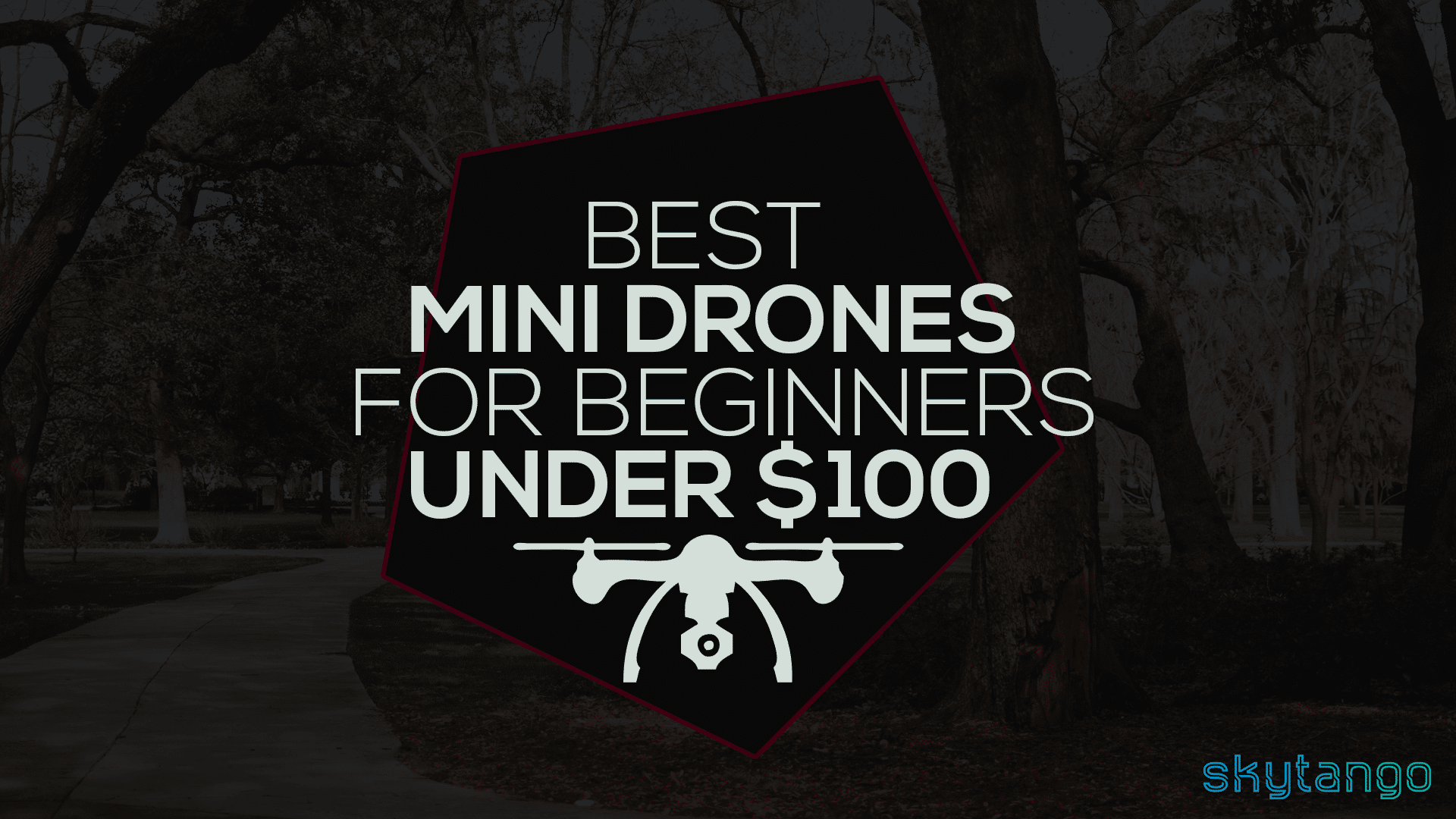 I Have Compiled A List Of 16 The Best Mini Drones For Beginners And Guess Whattheyre All Under 100 These Babies Are Perfect Start Anyone